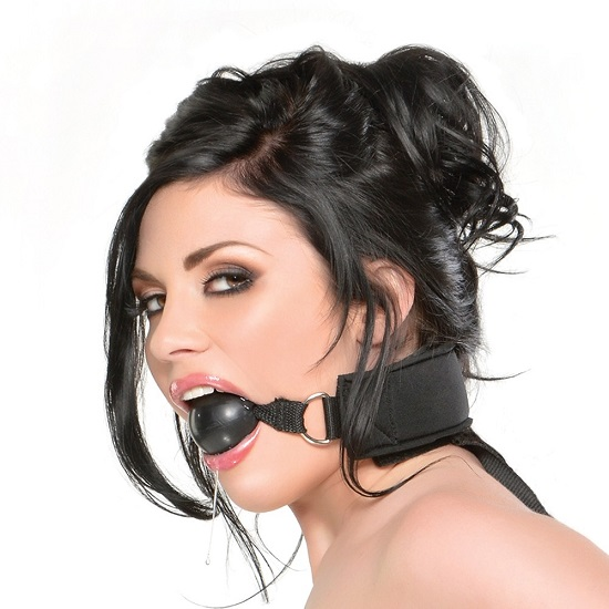 Gag And Wrist Restraint