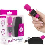 Palm Power Pocket Massager