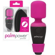 PalmPower Pocket Rechargeable Massager